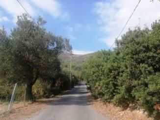 Verde pubblico e terreni privati a Ceriale