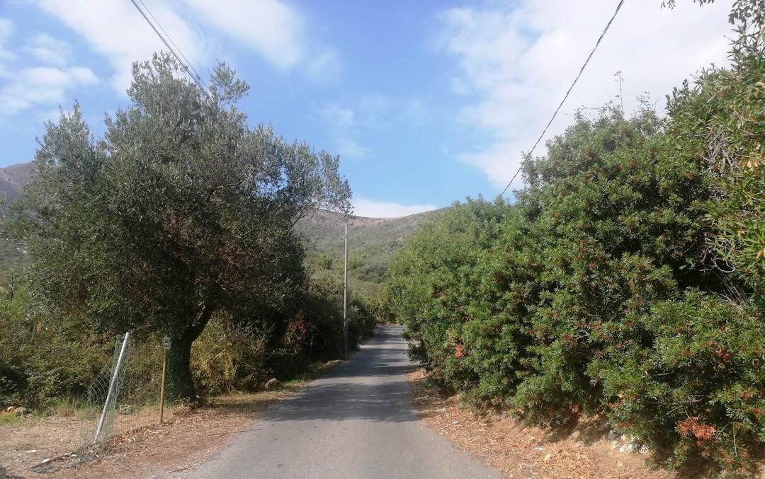 02 verde e terreni a Ceriale