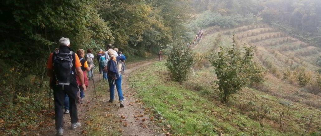 Una recente escursione nelle Langhe con il Cai loanese