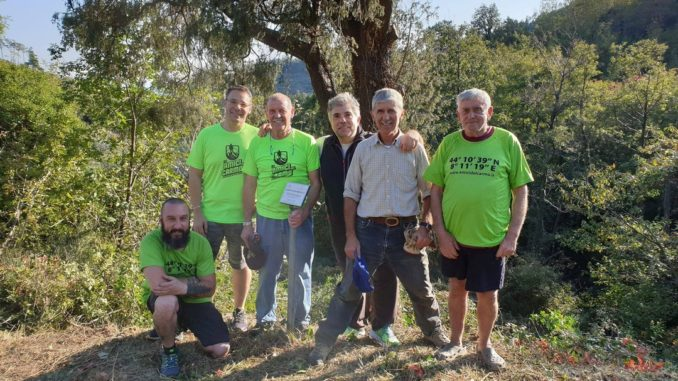 Amici del Carmo ripuliscono albero monumentale a Verzi di Loano