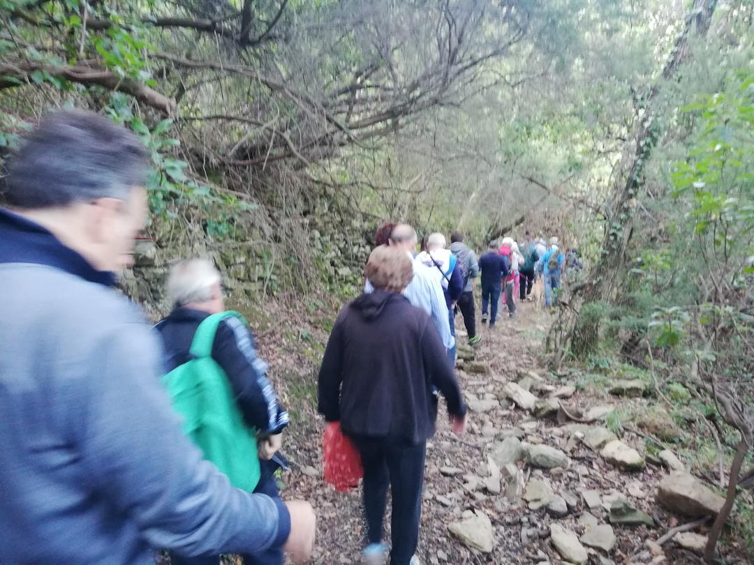 Camminata tra gli ulivi ad Andora 04