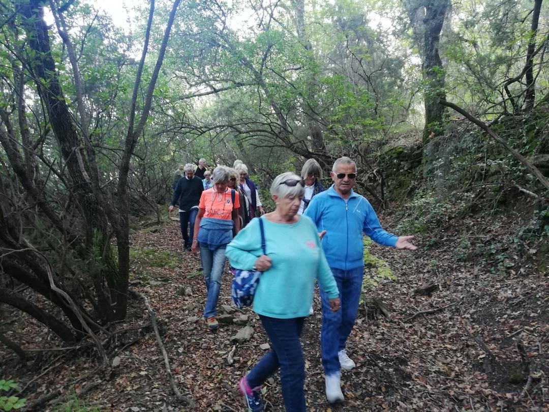 Camminata tra gli ulivi ad Andora 05