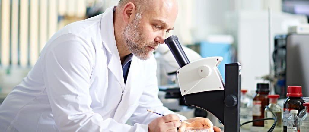 Stefano Vanin in laboratorio