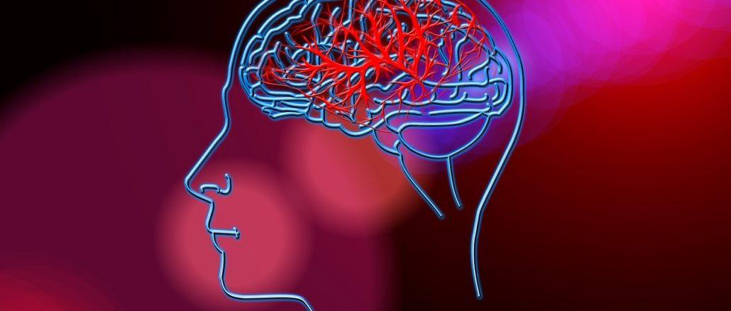 Mente e cervello