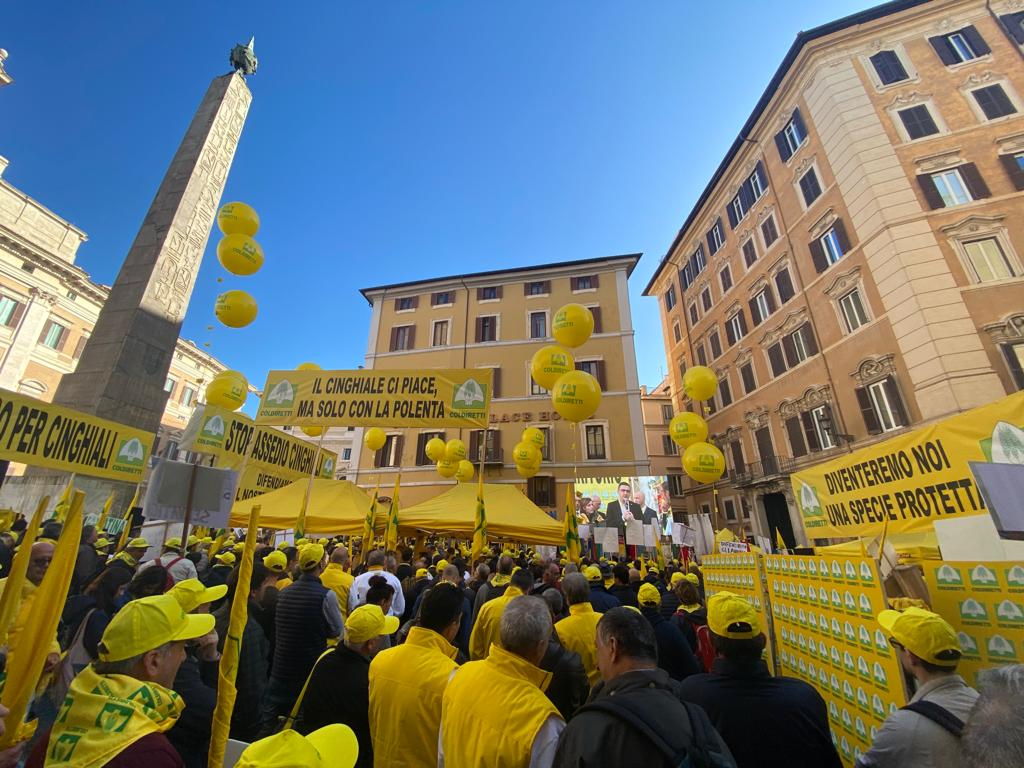 Coldiretti a Roma campagna anticinghiali 02