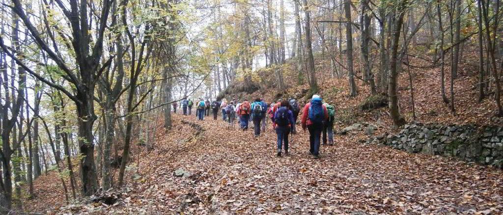 Escursione nei boschi nel sassellese