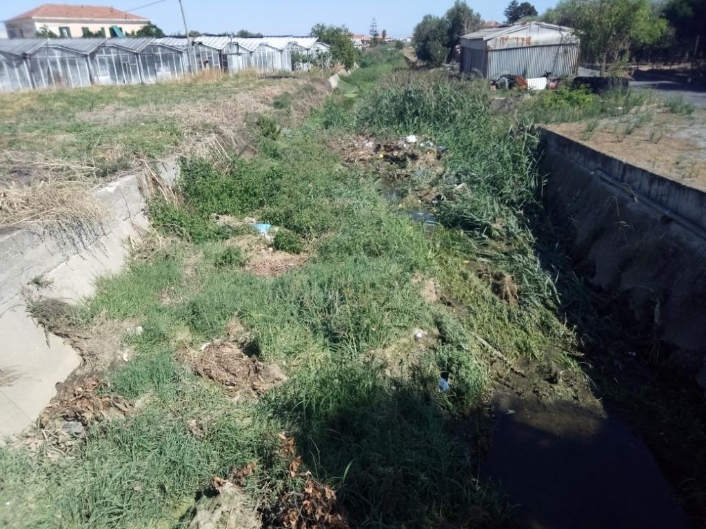 Lavori di pulizia alveo del Rio Antognano ad Albenga 1 a