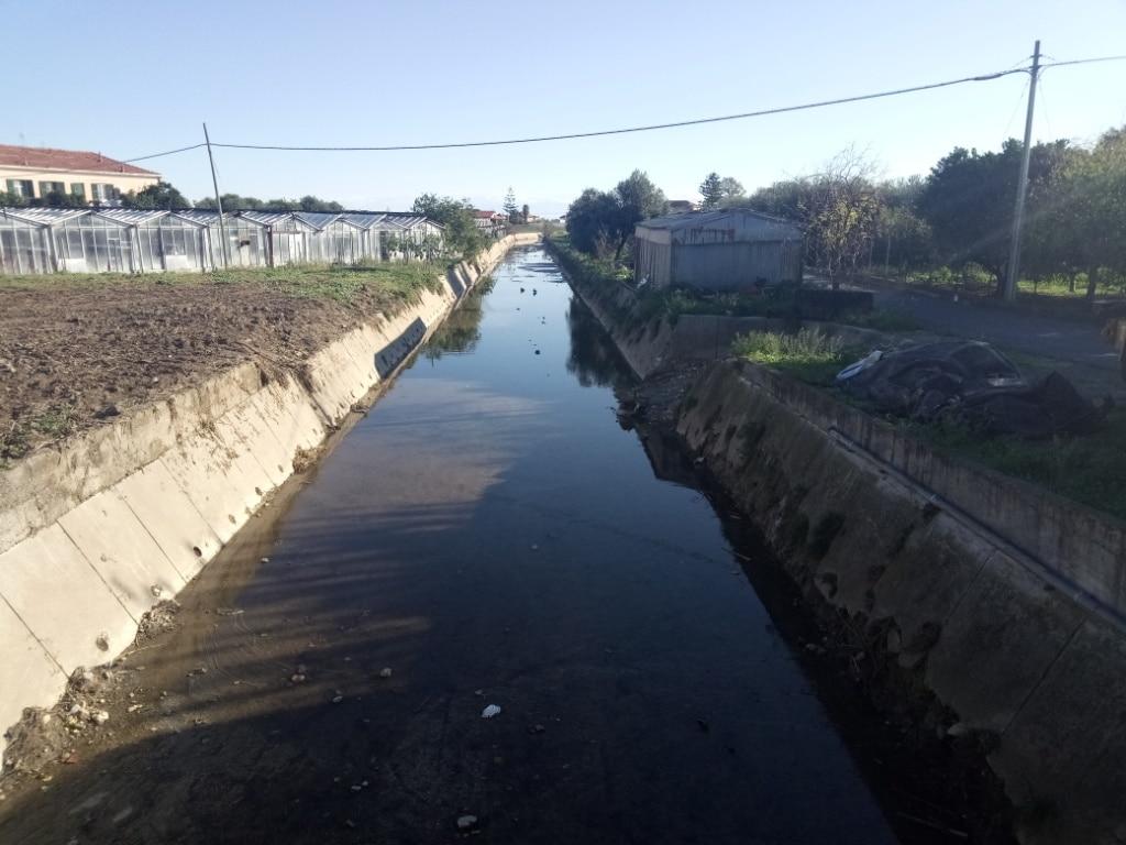 Lavori di pulizia alveo del Rio Antognano ad Albenga 1 b