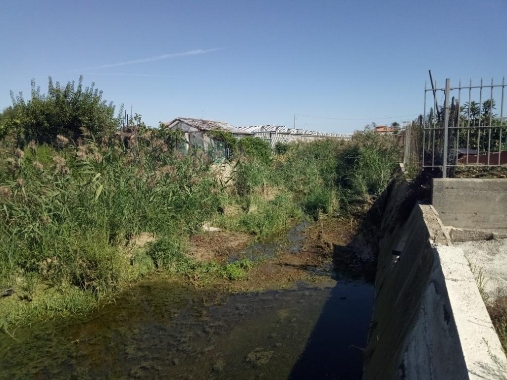 Lavori di pulizia alveo del Rio Antognano ad Albenga 2 a