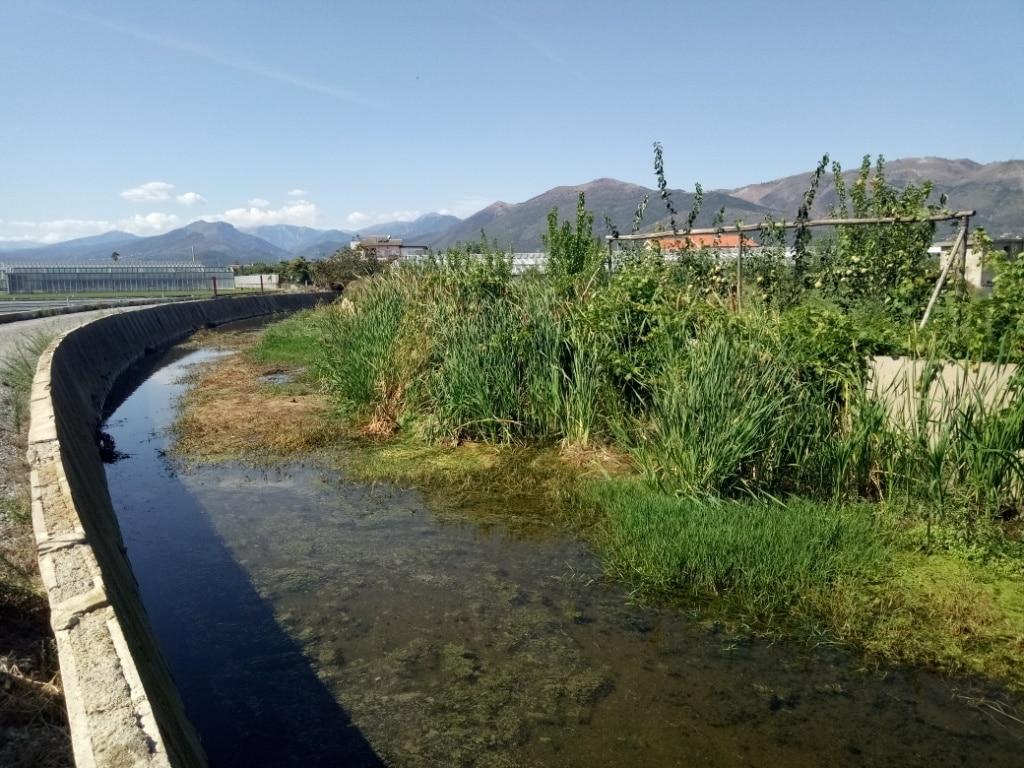 Lavori di pulizia alveo del Rio Antognano ad Albenga 3 a