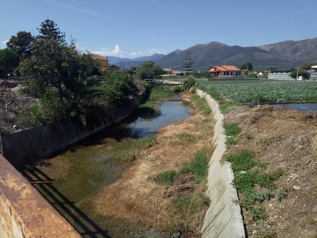 Lavori di pulizia alveo del Rio Antognano ad Albenga 4 a