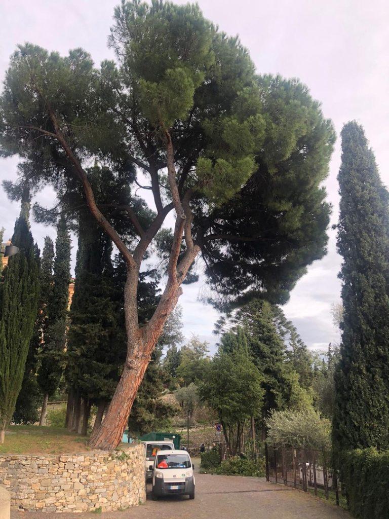 Villa Fiske lavori ad Alassio 03