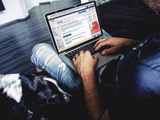 al computer su facebook con il cane