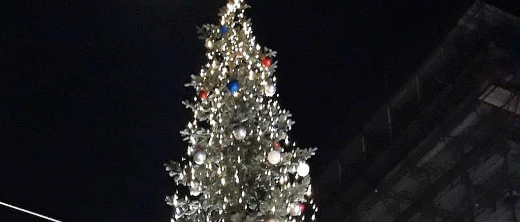 Albero di Natale a Sampierdarena