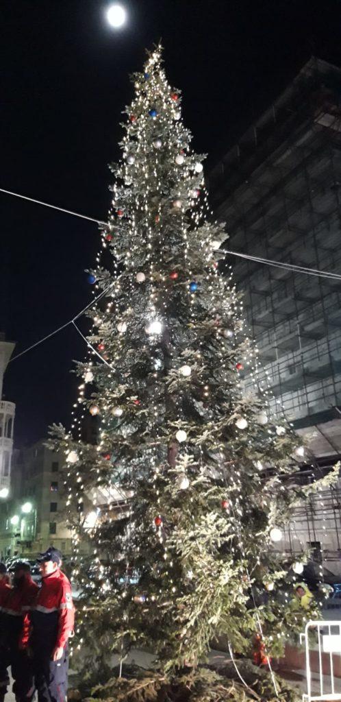 albero sampierdarena1
