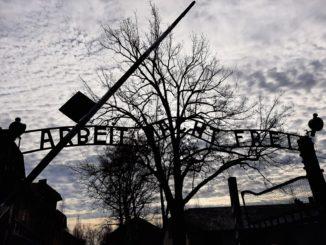 Nel campo di sterminio di Auschwitz- Birkenau