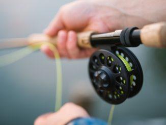canna da pesca