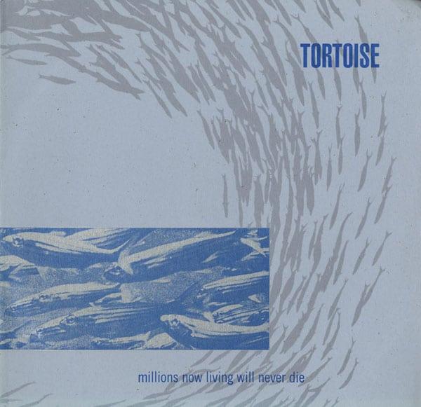tortoise millions living