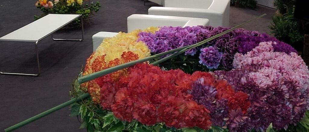Piante e fiori del Ponente Ligure