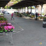Loano Mercato Agricoltori 02