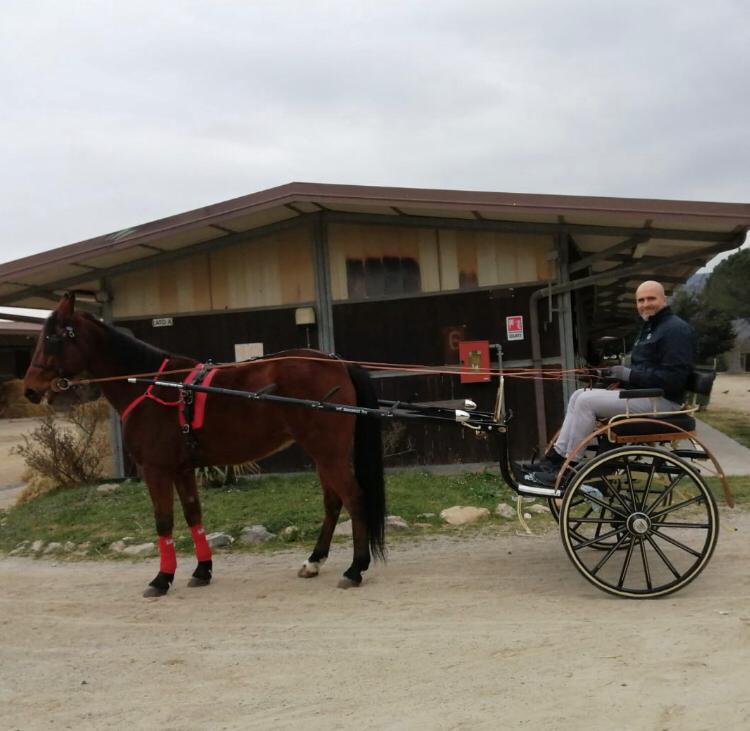 Albenga Il consigliere comunale Roberto Tomatis sul suo calesse trainato dal cavallo Nilo dell'Est