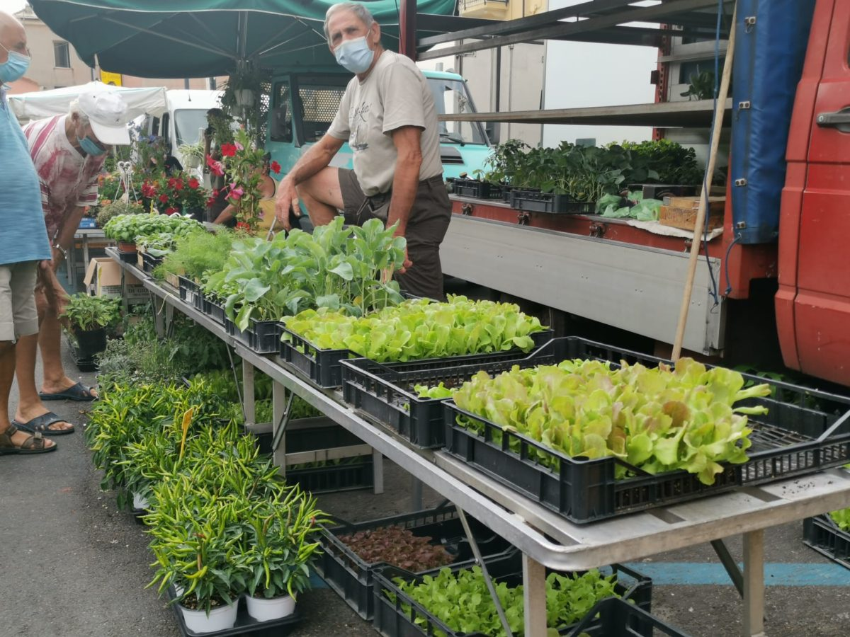 Alassio - Fiori e piante
