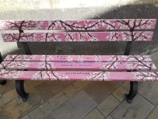 Ceriale - la panchina rosa di Peagna