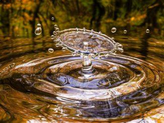 oasi wwf - acqua