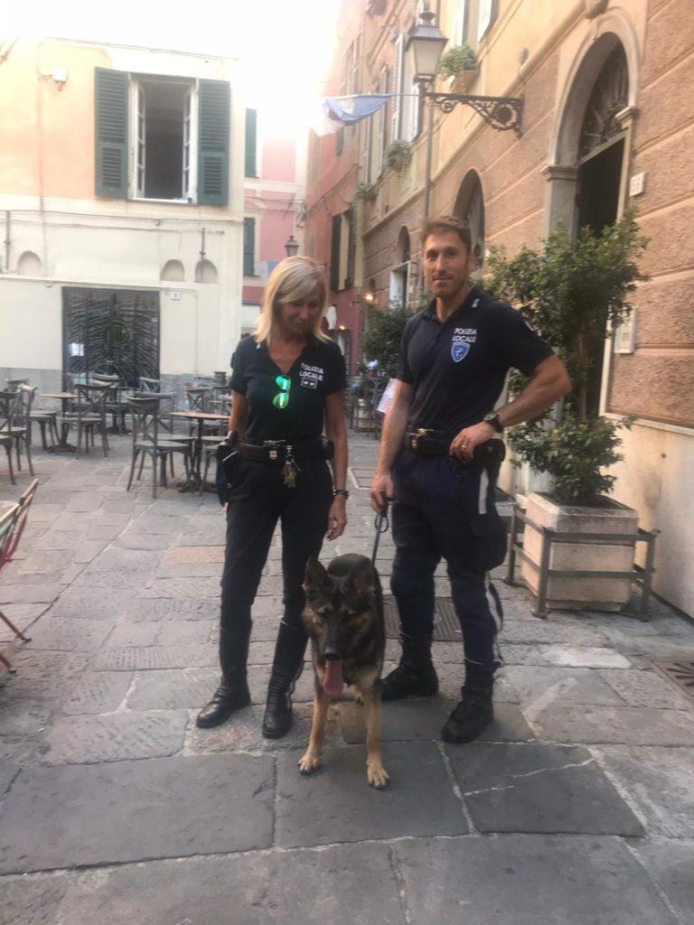 lupo polizia locale Albenga e Riviera di Ponente