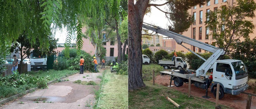 Albenga - cantonieri al lavoro per asilo