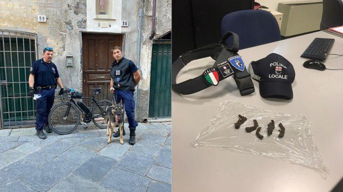 Polizia Locale operazione Lupo ad Albenga