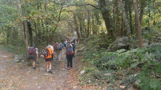 Sentiero sulla Via Francigena