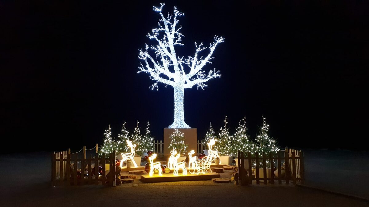 Andora - Albero di Natale sul molo Thor Heyerdahl