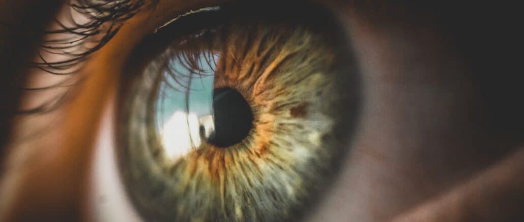 pupilla