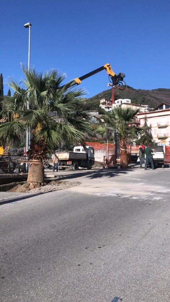 Palma via Pera 4