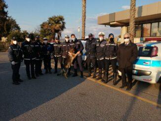 polizia locale albenga comando 2