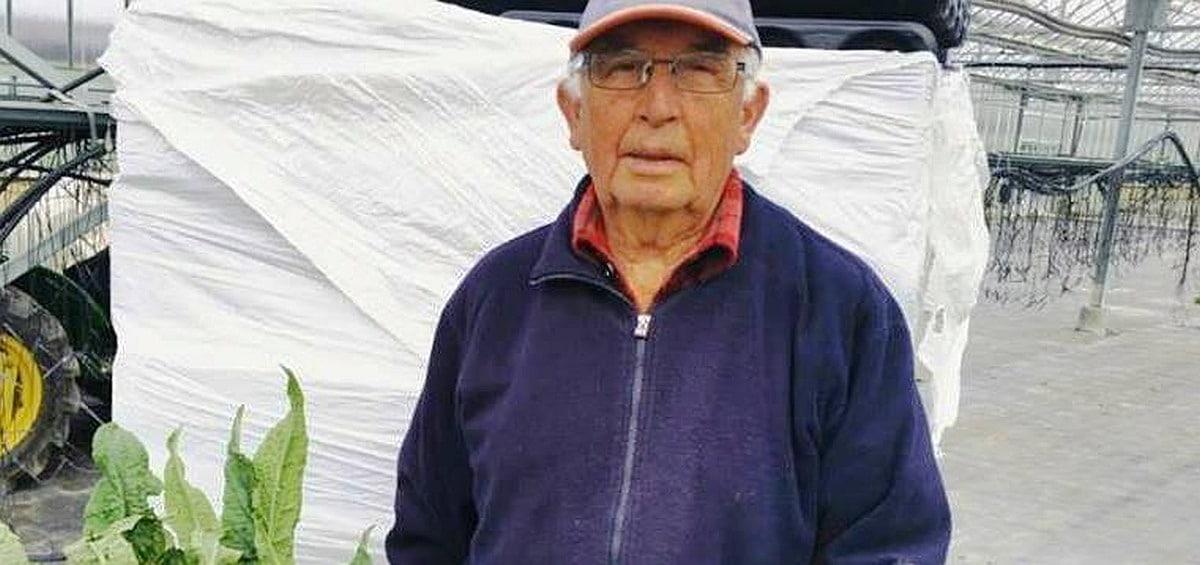 Albenga Giovanni Battista Enrico In azienda