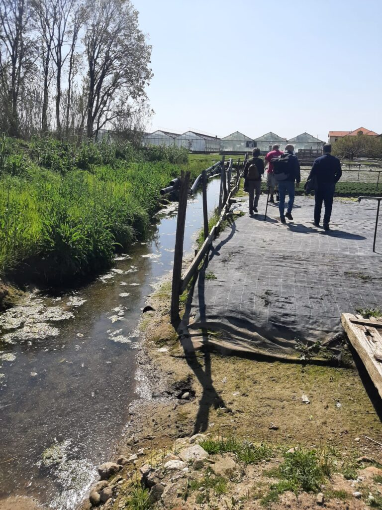 Albenga - sopralluogo Morachioli