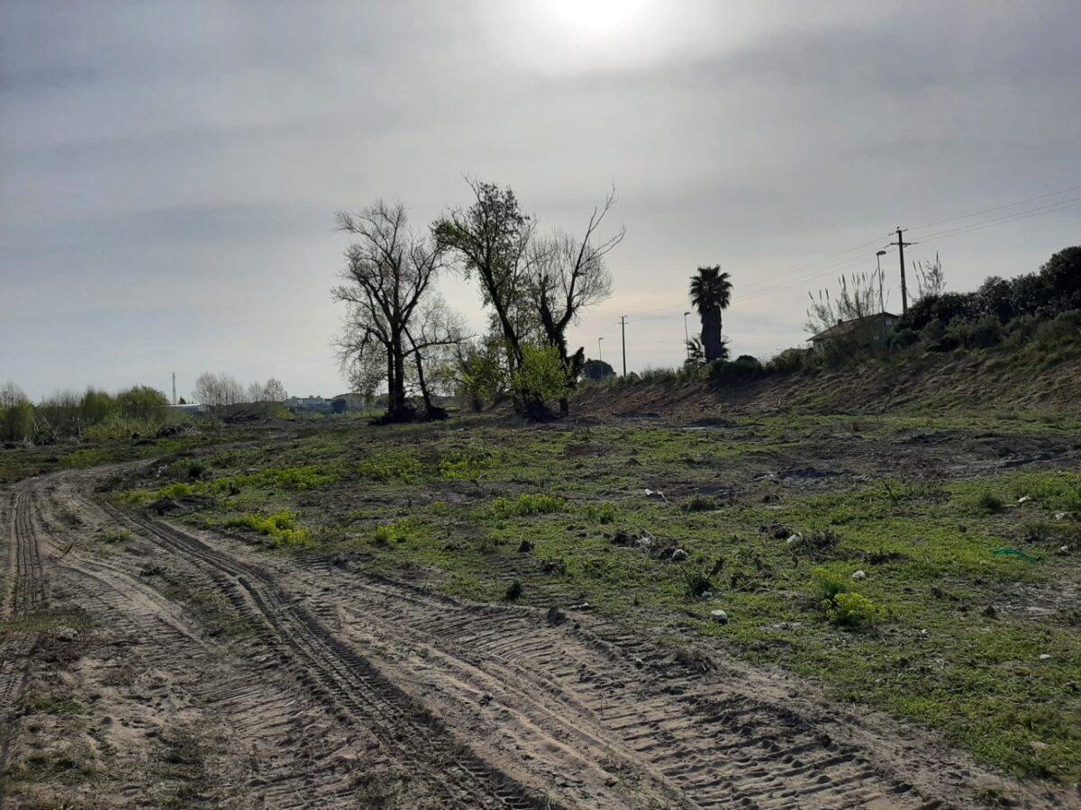 Pulizia fiume Centa ad Albenga