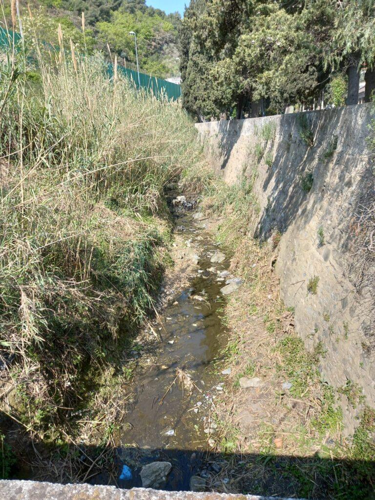 rio Barbona
