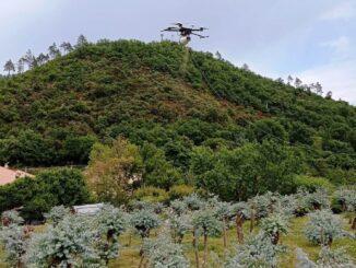 drone lancio insetti predatori